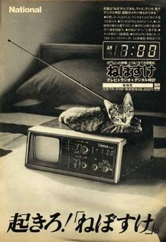 """Qats: a long history of laying about on electronics for what, in LOLcat, is called """"warmfs"""". Retro Advertising, Retro Ads, Vintage Advertisements, Vintage Tv, Vintage Posters, Dm Poster, Retro Design, Graphic Design, Japanese Poster"""