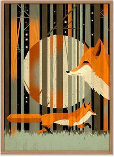 Dieter Braun, Fox in the night, 50x70, EUR 20,00