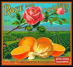 Orange crate label Redlands, CA