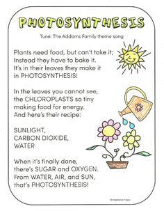 what is photosynthesis science work pinterest science photosynthesis and science worksheets. Black Bedroom Furniture Sets. Home Design Ideas