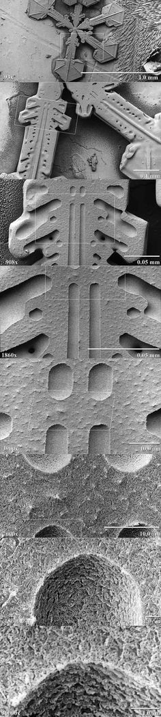 Low-temperature scanning electron microscope magnification series for a snow crystal. The crystals are captured, stored, and sputter-coated with platinum at cryogenic temperatures for imaging; Foto Macro, Scanning Electron Microscope, Microscopic Photography, Micro Photography, Microscopic Images, Macro And Micro, Things Under A Microscope, To Infinity And Beyond, Fractals