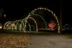 Simple to make PVC arches artfully display Christmas lights. Christmas Arch, Indoor Christmas Lights, Outside Christmas Decorations, Christmas Lights Outside, Christmas Light Displays, Xmas Lights, Decorating With Christmas Lights, Holiday Lights, Christmas Ideas