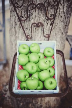Green Apples Wedding Decor