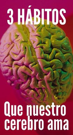 Tom Corley habla sobre la importancia de los hábitos y cómo afectan nuestro cerebro. Conoce los 3 hábitos que nuestro cerebro ama. Brain Trainer, Habits Of Mind, Neuroscience, Life Motivation, Healthy Life, Improve Yourself, The Cure, About Me Blog, Health Fitness