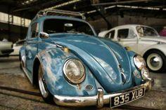 Low n' Slow beetle