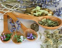 3 Herbs for Weight Loss Support