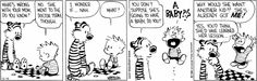 Calvin and Hobbs...do I need to say more?