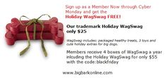 Big Bark Black Friday through Cyber Monday Deal on Holiday WagSwag and Membership!