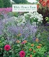 Impatiens walleriana variegata white flower farm flower farm and white flower farm catalog bing images mightylinksfo