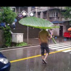 Duurzame paraplu!