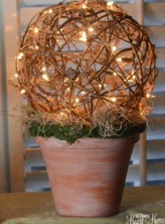 Lighted Grapevine Ball Topiary. Easy to put together with a terra cotta flower pot, moss, and either a DIY lighted grapevine ball or a pre-made one like the one here http://www.save-on-crafts.com/twigballlights.html