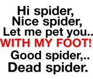 well...more or less, prolly more like EEK! spider! kill the spider! mom kill the spider! let me spray you with poison! better spider...dead spider.