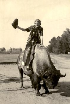 Have you ever seen a buffalo in Florida? Minnie Mittelmayer rides one at Silver Springs in this photo postcard (1952). | Florida Memory