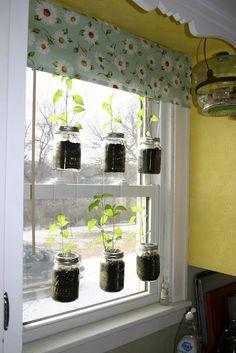 Start seeds in hanging mason jars?