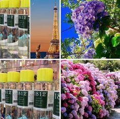 Seine 1812 original eau de cologne paris France