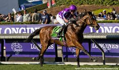 In a brilliantly confident display of reinsmanship, jockey Seamus Heffernan won his first Breeders' Cup by moving Highland Reel nearing the half-mile pole in Saturday's Longines Turf. The Coolmore partners-owned colt gained nearly a seven-length advantage over his rivals entering the far turn, and had enough left in reserve to hold off Flintshire by 1 …