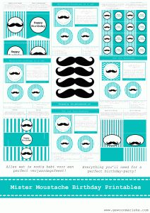 Mister Moustache Birthday Printables. A fun way to celebrate the birthday of a little boy.