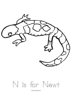 Color the venus flytrap coloring plants and colors for Newt coloring page