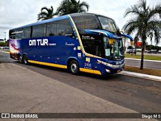 Buses, Vehicles, Campo Grande, Busses, Car, Vehicle, Tools