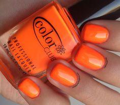 Image result for color club orange