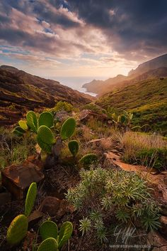 """Island of Light - """"Island of Light"""" - La Gomera  It´s not only the shape of a landscape that makes it typical. Other sensual properties, such as smell and perception of light make a striking landscape. With a little dense in the air and warm sunlight just before sunset I would describe coastal-light. The small and rugged island of La Gomera pictures a very fine example.  Prints and licensing available.  <a href=""""https://www.facebook.com/StefanHefelePhotography"""">Facebook Fan Site</a>  <a…"""