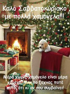 New Years Eve, Good Morning, Wish, Scene, Christmas Tree, Holiday Decor, Photography, Quotes, Buen Dia