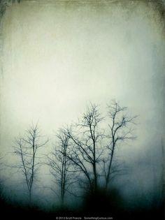 April 22, 2013 'Facile'  by Scott Francis / SomethingCurious.com