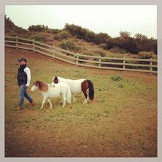 Cesar at Mr. Daly's ranch.