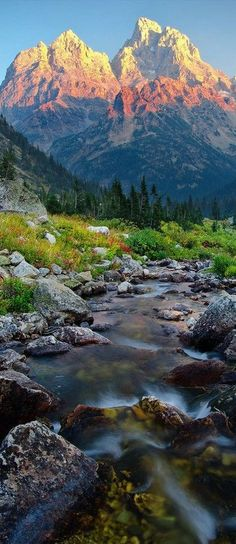 North Fork Cascade Canyon - Grand Teton National Park, Wyoming I love the Tetons Parc National, Grand Teton National Park, National Parks, National Forest, Rocky Mountain National, Places To Travel, Places To See, Travel Destinations, Travel Tips