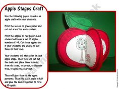 You can teach about Johnny Appleseed all fall while the apples are ready. Check out my apple craft. The kiddos color and cut out the stages of an apple tree, glue them to the apple patterns, and then create a foldable apple for a fall craft. Apple Activities, Autumn Activities, Science Activities, Science Ideas, Science Projects, Art Projects, Apple Life Cycle, Teaching Tools, Teaching Ideas