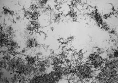 El jardin de los senderos que se bifurcan Tinta sobre papel  140 x 100 cm
