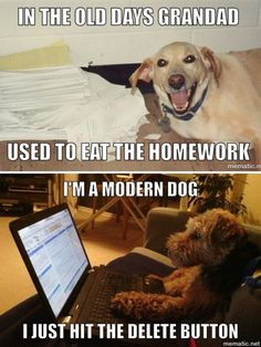 In the old days grand dad used to eat the homework.  I'm a modern dog.  I just hit the delete button.