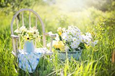 When Did You First Love Your Garden?