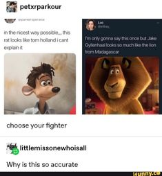 % petxrparkour m the nicest way possnble,,, this rat looks like torn holland I cant explain wt choose your fighter - iFunny :) Stupid Funny, Haha Funny, Funny Jokes, Hilarious, Funny Stuff, Random Stuff, Funny Things, Stupid Memes, Marvel Funny