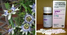 3 HERBAL ALTERNATIVES TO XANAX FOR RELIEVING ANXIETY, DEPRESSION AND INSOMNIA