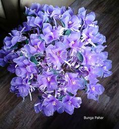 Lilac Cosmos Bunga Pahar/Telur.