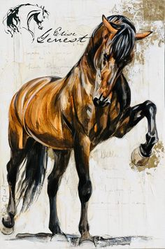 Toiles passées - past paintings — Elise Genest Painted Horses, Pretty Horses, Beautiful Horses, Horse Drawings, Art Drawings, Arte Equina, Watercolor Horse, Horse Artwork, Majestic Horse