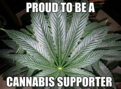 Proud to Be Green