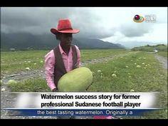 蘇丹人在花蓮玉里成西瓜專家 Watermelon success story for former professional Sudanese ...