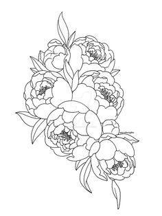 peonies by microberights on DeviantArt Peony Drawing, Floral Drawing, Botanical Line Drawing, Botanical Art, Peony Illustration, Diy Y Manualidades, Peonies Tattoo, Deviant Art, Fabric Painting