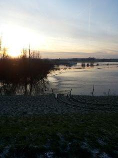 Stroming in een weiland naast de IJssel.