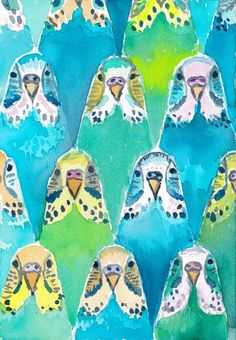Budgies Art Print by Barbarian // Barbra Ignatiev: