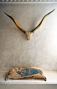 Swahili Guest House, horns and plaster wall Diy Interior, Interior And Exterior, Wabi Sabi, Home Deco, La Main Au Collet, Lamu Kenya, Living Tv, Living Room, Cow Skull