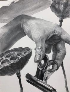 Ap Drawing, Human Drawing, Anatomy Drawing, Technical Drawing, Drawing Sketches, Graphite Drawings, Pencil Art Drawings, Hand Kunst, Drawing Exercises