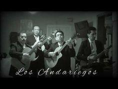 8 Ideas De Musica Mia Solo Mia Canciones Gelatinas Youtube