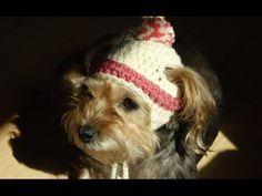 Gorro Crochet para Perritos / Tutorial   Patrones para Crochet