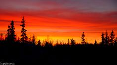 Sunrise on January 1st 2011 near my home in Fairbanks, Alaska. These were some of the most vibrant colors that I have ever seen in the sky. Rarely is it necessary to desaturate an image because the colors are so overblown, but this was definitely one of those days.      Printing Recommendations For a 380 ppi image: 5 x 10 in. panoramic print size (needs cropping)   For a 250 ppi image: 8 x 16 in. panoramic print size (needs cropping)
