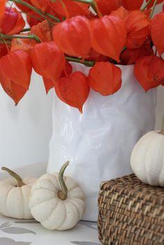 modern jane: Fall Decor ~ Chinese Lanterns.