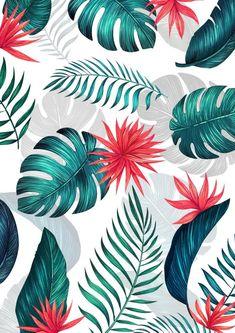 Flower Iphone Wallpaper, Plant Wallpaper, Tropical Wallpaper, Flower Background Wallpaper, Summer Wallpaper, Cute Wallpaper Backgrounds, Cute Patterns Wallpaper, Cellphone Wallpaper, Flower Backgrounds