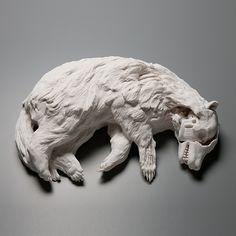 Hand built porcelain sculpture by Kate MacDowell. Kate Macdowell, Memento Mori, Tarzan, Badger, Sculpting, Contemporary Art, Contemporary Ceramics, Lion Sculpture, Ceramic Sculptures